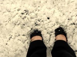 snow 012