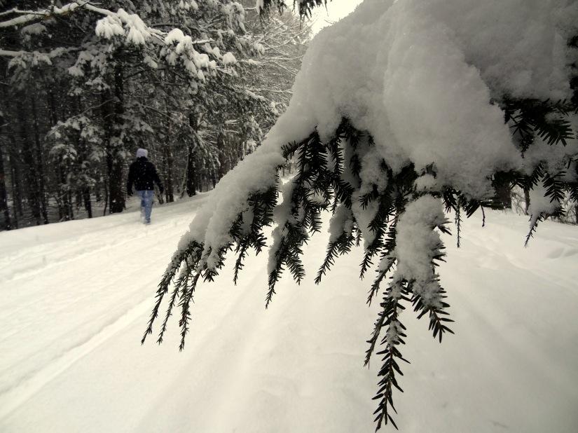 snow! 013