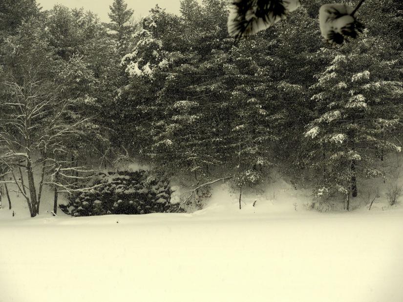 snow! 026